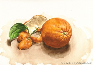 Orange Study in Watercolour